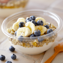 Blueberry Banana Greek Yogurt Bowl